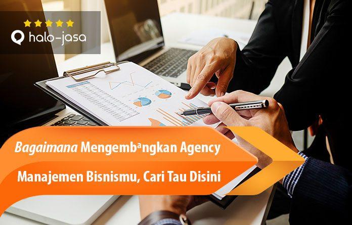 Halojasa Mengembangkan Agency Manajemen Bisnis